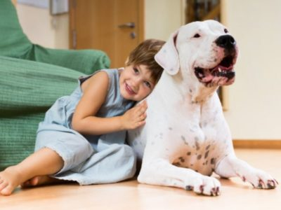 Las mascotas en el desarrollo de los niños